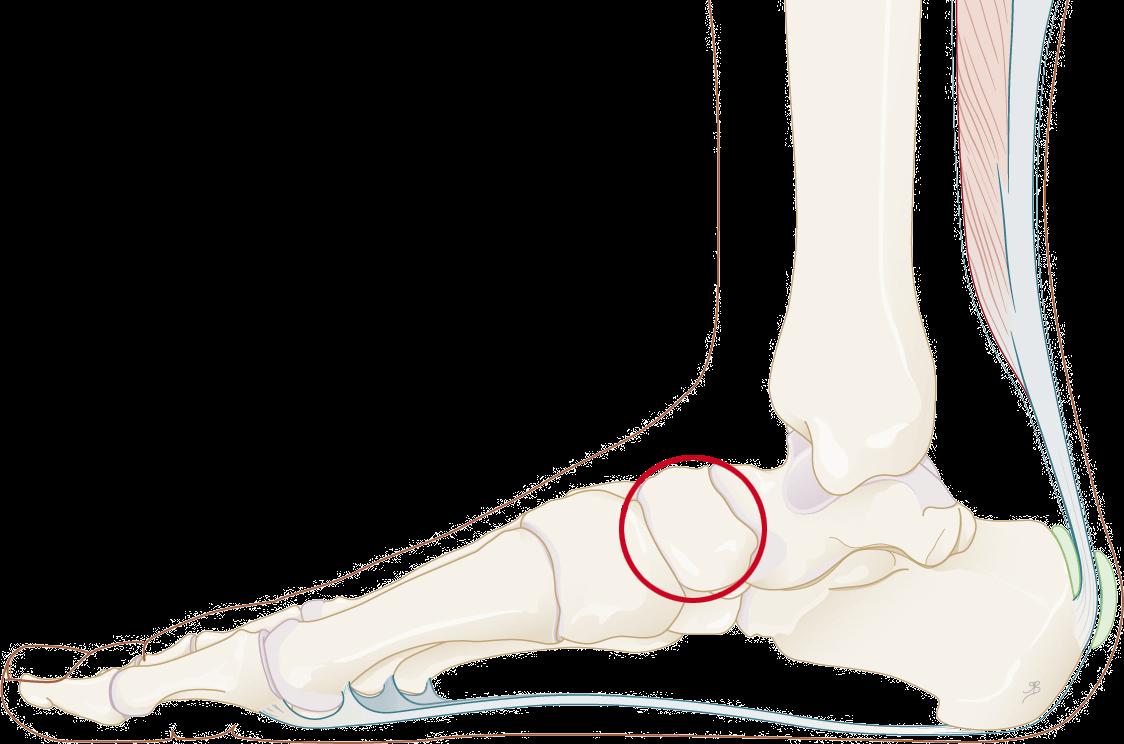 tintelingen in beide voeten